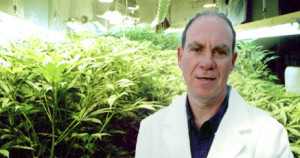 Checking out Montreal's Cannabis Cup with American pot guru Ed Rosenthal